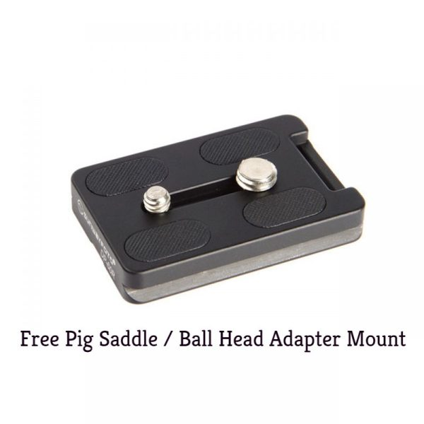 Sunwayfoto ball head / pig saddle mounting plate